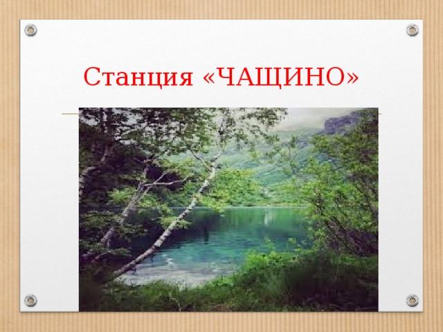 Станция «ЧАЩИНО»