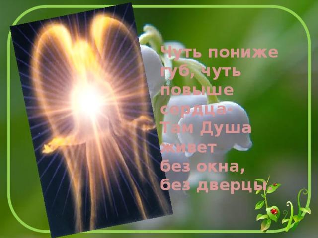 Чуть пониже губ, чуть повыше сердца- Там Душа живет без окна, без дверцы.