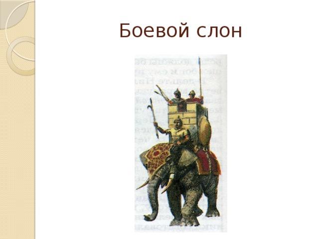 Боевой слон