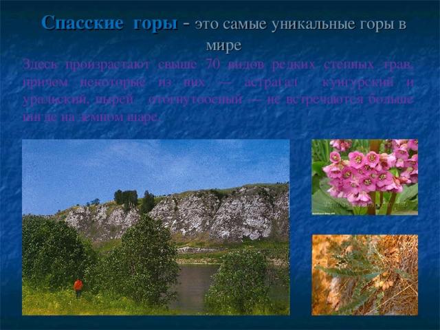 Спасские горы -  это самые уникальные горы в мире   Здесь произрастают свыше 70 видов редких степных трав, причем некоторые из них — астрагал кунгурский и уральский, пырей отогнутоосный — не встречаются больше нигде на земном шаре.