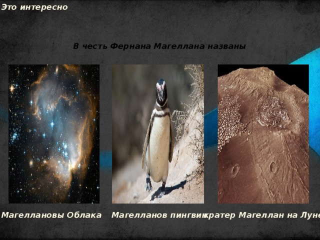 Это интересно В честь Фернана Магеллана названы Магеллановы Облака Магелланов пингвин кратер Магеллан на Луне