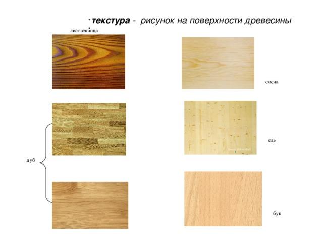 текстура - рисунок на поверхности древесины