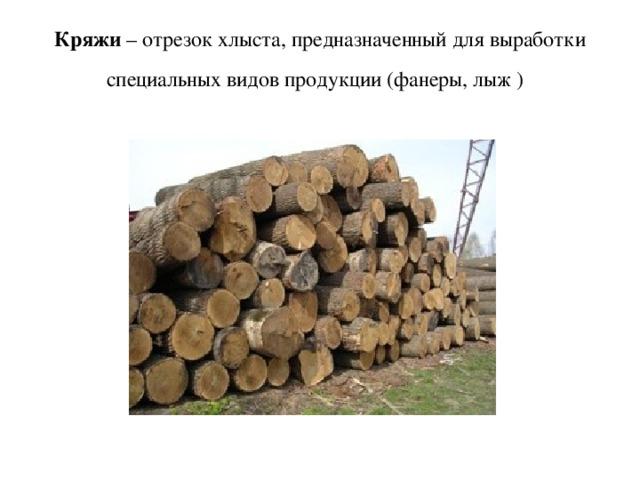 Кряжи – отрезок хлыста, предназначенный для выработки специальных видов продукции (фанеры, лыж )