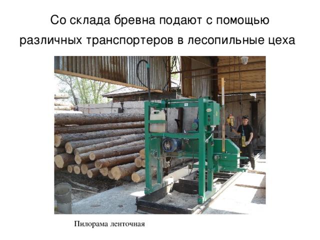 Со склада бревна подают с помощью различных транспортеров в лесопильные цеха  Пилорама ленточная