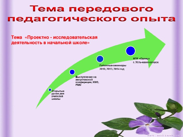 Тема «Проектно - исследовательская деятельность в начальной школе»