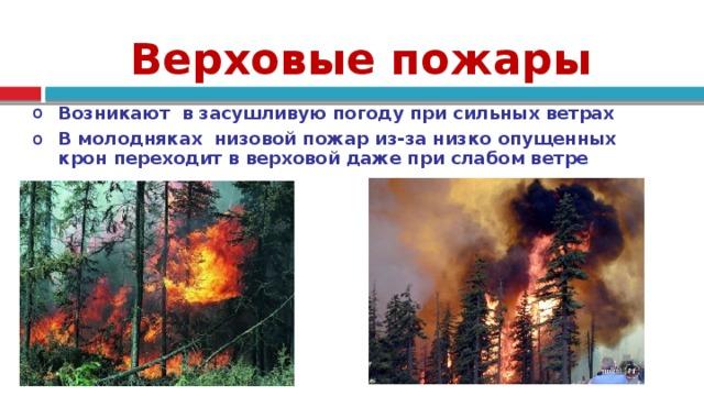 Верховые пожары