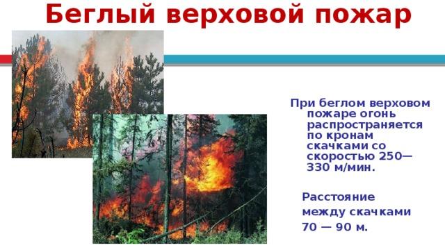 Беглый верховой пожар При беглом верховом пожаре огонь распространяется по кронам скачками со скоростью 250—330 м/мин.   Расстояние  между скачками  70 — 90 м.