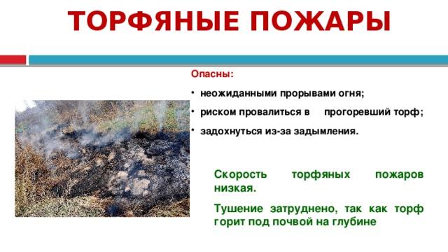 ТОРФЯНЫЕ ПОЖАРЫ Опасны:  неожиданными прорывами огня;  риском провалиться в прогоревший торф;  задохнуться из-за задымления. Скорость торфяных пожаров низкая. Тушение затруднено, так как торф горит под почвой на глубине