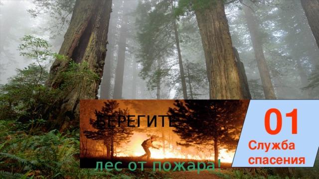 01 БЕРЕГИТЕ Служба спасения лес от пожара!