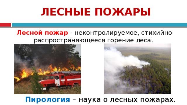 ЛЕСНЫЕ ПОЖАРЫ  Лесной пожар - неконтролируемое, стихийно распространяющееся горение леса. Пирология – наука о лесных пожарах. 4