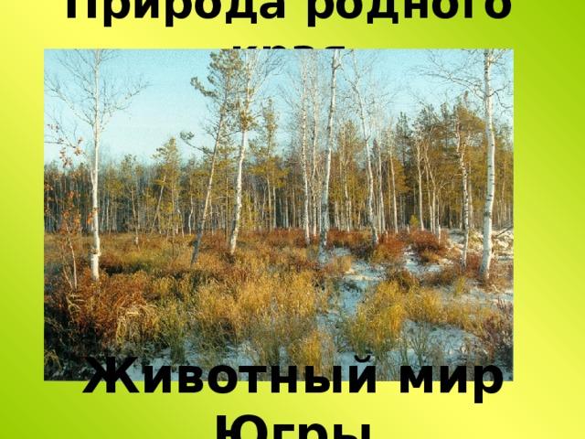 Природа родного края Животный мир Югры