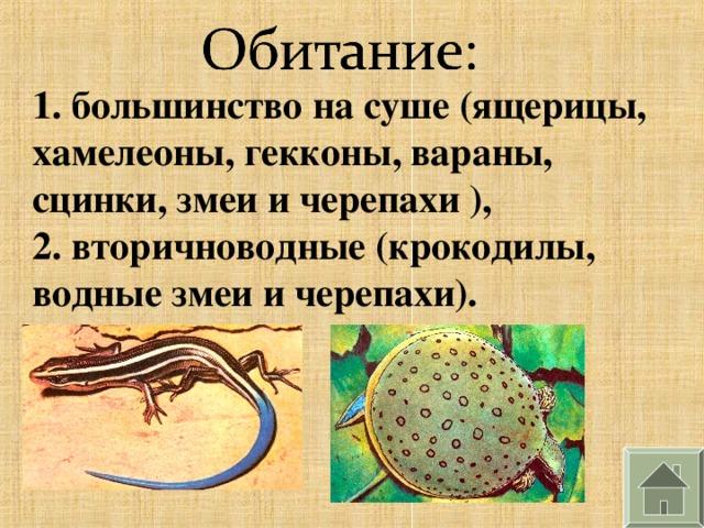 1. большинство на суше (ящерицы, хамелеоны, гекконы, вараны, сцинки, змеи и черепахи ), 2. вторичноводные (крокодилы, водные змеи и черепахи).