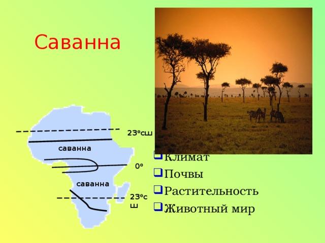 Климат Почвы Растительность Животный мир