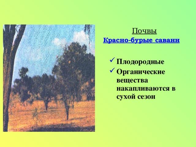 Почвы Красно-бурые саванн