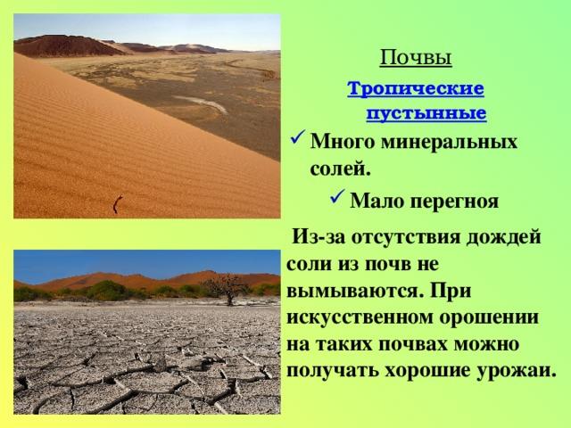Почвы Тропические пустынные Много минеральных солей. Мало перегноя  Из-за отсутствия дождей соли из почв не вымываются. При искусственном орошении на таких почвах можно получать хорошие урожаи.