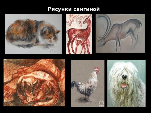 Рисунки сангиной