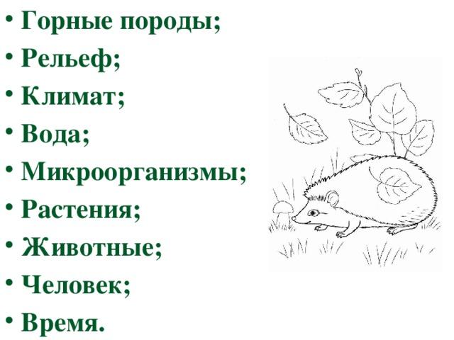 Горные породы; Рельеф; Климат; Вода; Микроорганизмы; Растения; Животные; Человек; Время.