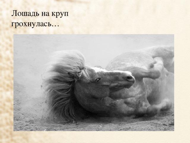 Лошадь на круп  грохнулась…