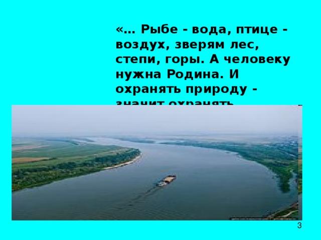 «… Рыбе - вода, птице - воздух, зверям лес, степи, горы. А человеку нужна Родина. И охранять природу - значит охранять Родину».  М. Пришвин.