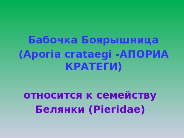 Бабочка Боярышница  (Aporia crataegi -АПОРИА КРАТЕГИ)  относится к семейству Белянки (Pieridae)