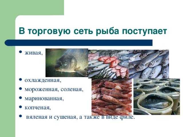 В торговую сеть рыба поступает