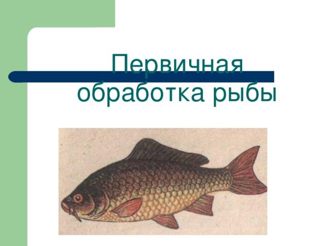 Первичная обработка рыбы