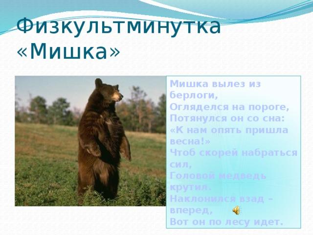 Физкультминутка «Мишка» Мишка вылез из берлоги, Огляделся на пороге, Потянулся он со сна: «К нам опять пришла весна!» Чтоб скорей набраться сил, Головой медведь крутил. Наклонился взад –вперед, Вот он по лесу идет.