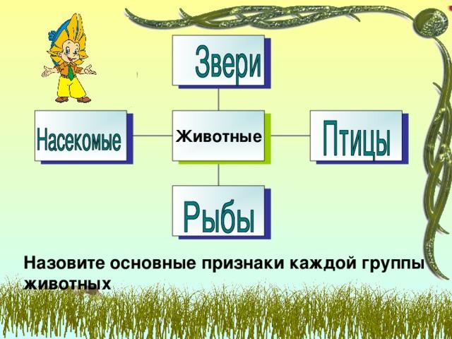 Животные Назовите основные признаки каждой группы животных