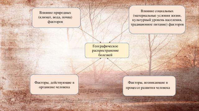 Влияние социальных (материальные условия жизни, культурный уровень населения, традиционное питание) факторов Влияние природных (климат, вода, почва) факторов Географическое распространение болезней Факторы, действующие в организме человека Факторы, возникающие в процессе развития человека