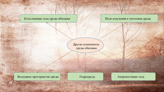 Поле излучений и тяготения среды Естественные тела среды обитания Другие компоненты среды обитания Гидросреда Воздушное пространство среды Антропогенные тела