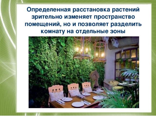 Определенная расстановка растений зрительно изменяет пространство помещений, но и позволяет разделить комнату на отдельные зоны