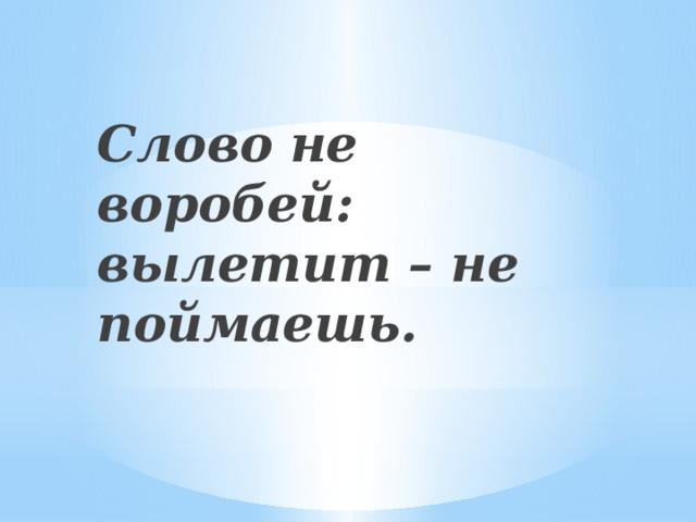 Слово не воробей: вылетит – не поймаешь.