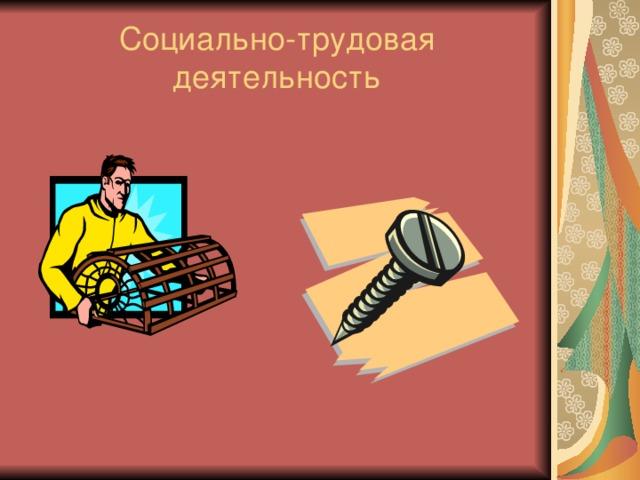 Социально-трудовая деятельность