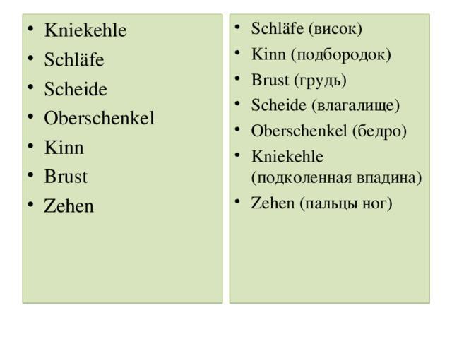 Kniekehle Schläfe Scheide Oberschenkel Kinn Brust Zehen Schläfe ( висок ) Kinn (подбородок) Brust (грудь ) Scheide (влагалище) Oberschenkel (бедро) Kniekehle (подколенная впадина) Zehen (пальцы ног)