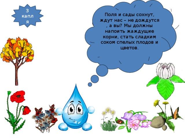 Поля и сады сохнут, ждут нас – не дождутся , а вы? Мы должны напоить жаждущие корни, стать сладким соком спелых плодов и цветов. 3 капля