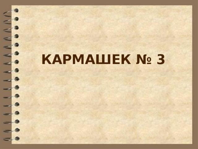 КАРМАШЕК № 3
