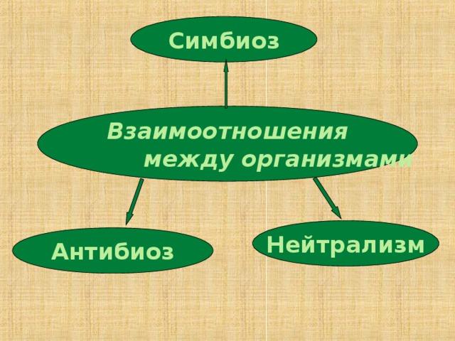Симбиоз Взаимоотношения  между организмами Нейтрализм Антибиоз