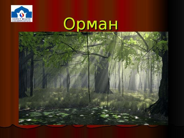 Орман