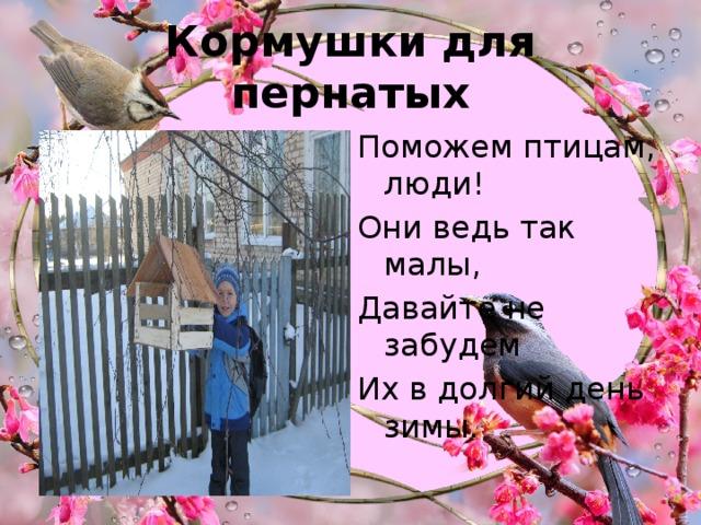 Кормушки для пернатых Поможем птицам, люди! Они ведь так малы, Давайте не забудем Их в долгий день зимы.