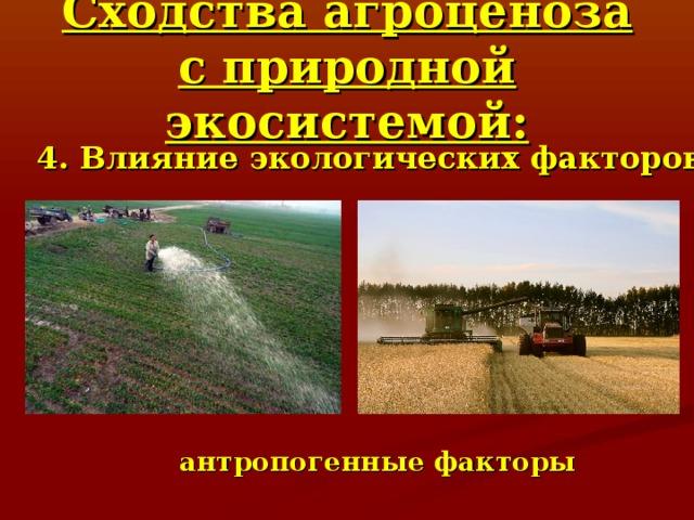 Сходства агроценоза с природной экосистемой: 4. Влияние экологических факторов антропогенные факторы