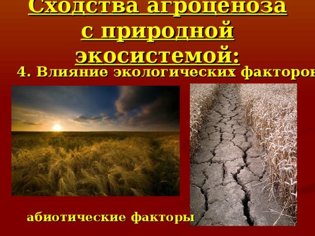 Сходства агроценоза с природной экосистемой: 4. Влияние экологических факторов абиотические факторы