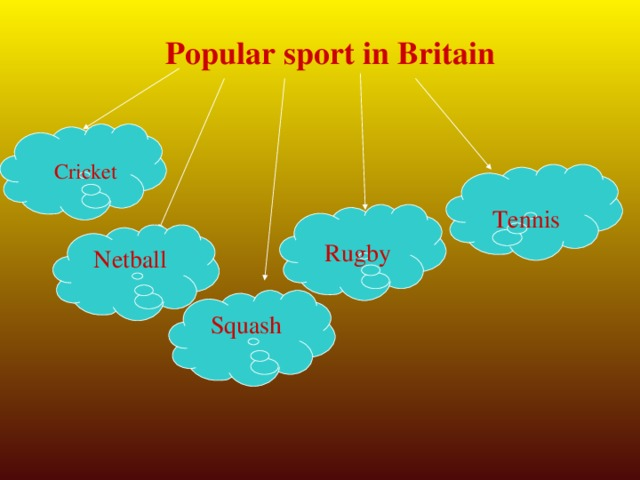 Popular sport in Britain Cricket Tennis Netball Rugby Squash