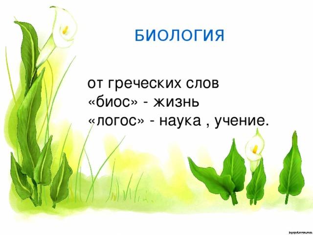 БИОЛОГИЯ от греческих слов «биос» - жизнь «логос» - наука , учение.