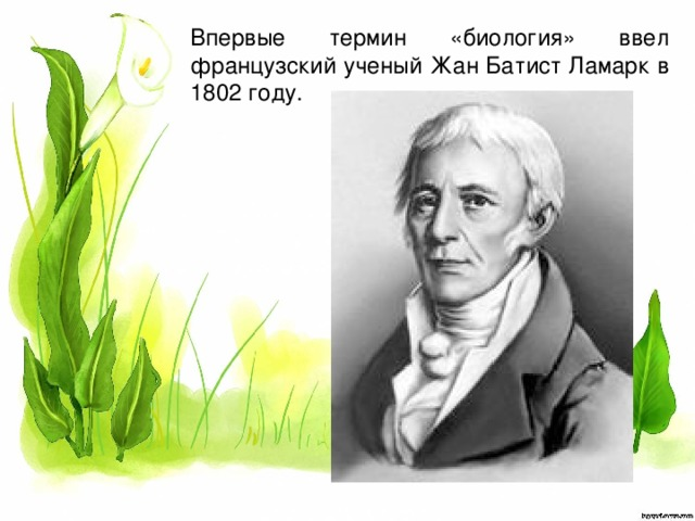 Впервые термин «биология» ввел французский ученый Жан Батист Ламарк в 1802 году.