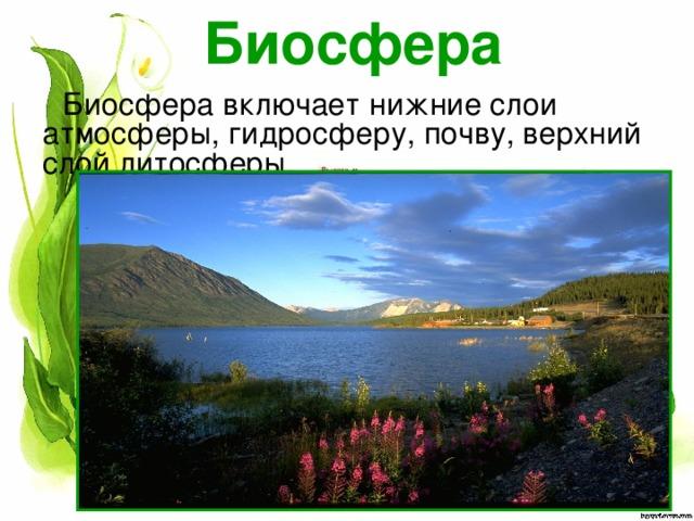 Биосфера Биосфера включает нижние слои атмосферы, гидросферу, почву, верхний слой литосферы.