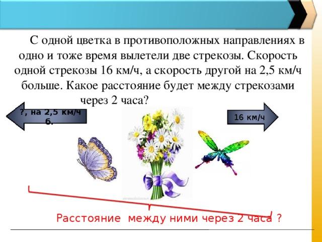 С одной цветка в противоположных направлениях в одно и тоже время вылетели две стрекозы. Скорость одной стрекозы 16 км/ч, а скорость другой на 2,5 км/ч больше. Какое расстояние будет между стрекозами через 2 часа? ?, на 2,5 км/ч б.  16 км/ч Расстояние между ними через 2 часа ?