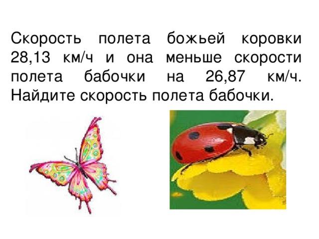 Скорость полета божьей коровки 28,13 км/ч и она меньше скорости полета бабочки на 26,87 км/ч. Найдите скорость полета бабочки.
