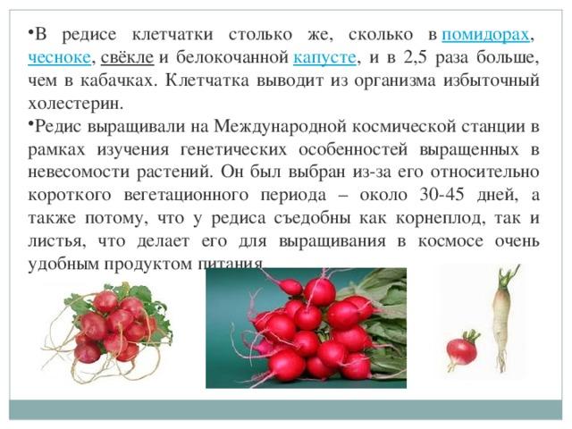 В редисе клетчатки столько же, сколько в помидорах , чесноке , свёкле и белокочанной капусте