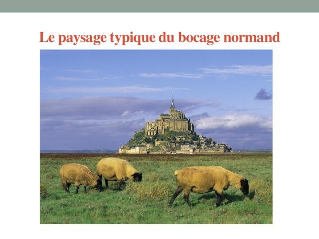 Le paysage typique du bocage normand