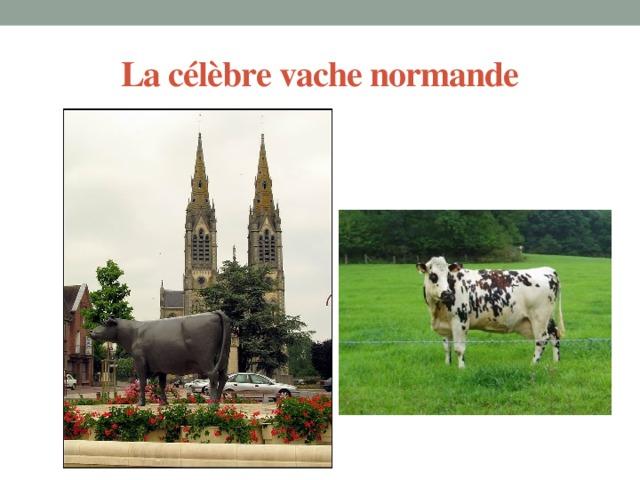 La célèbre vache normande